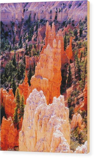 Hoodoos Of Faryland Canyon Wood Print