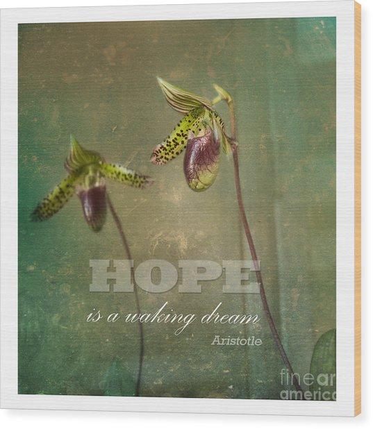 Hope Is Wood Print