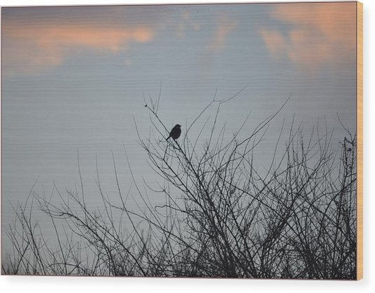 Hope Perched  Atop Wood Print