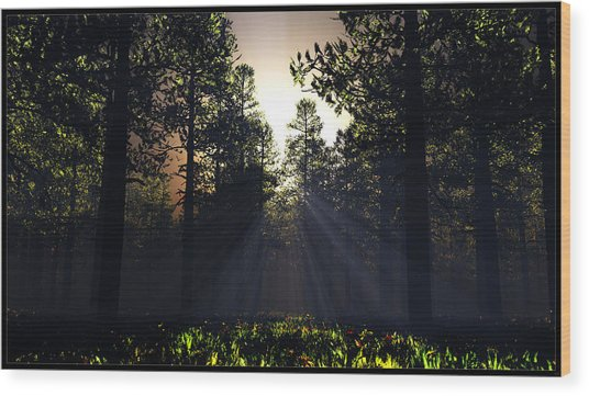 Hope Springs Eternal... Wood Print