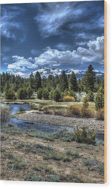 Hope Valley Wildlife Area 2 Wood Print