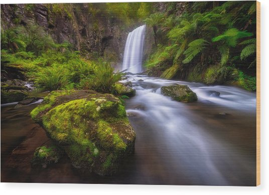Hopetoun Falls Wood Print by Lincoln Harrison