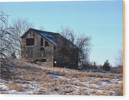 Horning Road Barn Wood Print by Jennifer  King
