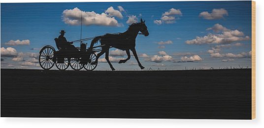 Horse And Buggy Mennonite Wood Print