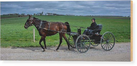Horse And Buggy On The Farm Wood Print
