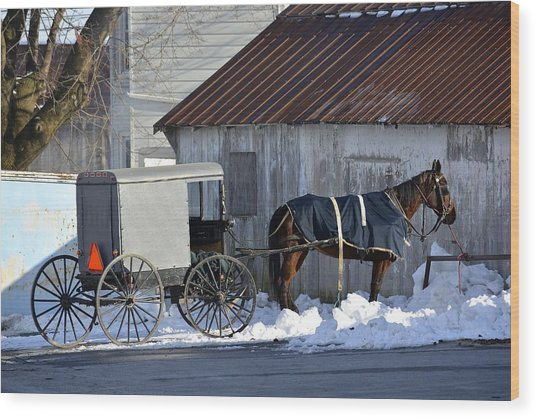 Horse And Buggy Parked Wood Print
