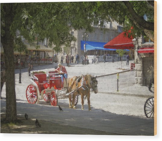Horse And Carriage Street Scene Montreal Wood Print by Ann Powell