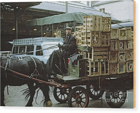 Horse And Cart London 1973 Wood Print by David Davies
