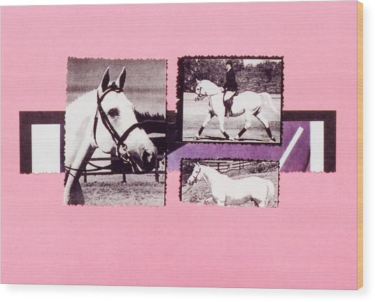 Horse And Rider C Wood Print by Mary Ann  Leitch