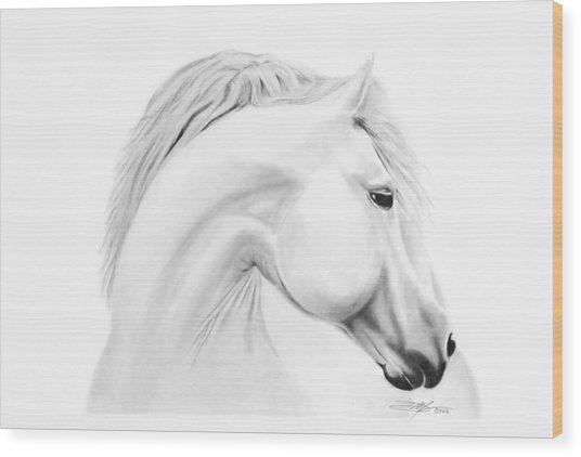 Horse Wood Print by Don Medina
