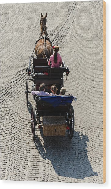 Horse Drawn Carriage Wood Print