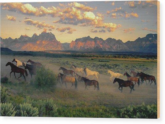 Horse Drive At Teton Sunrise Wood Print