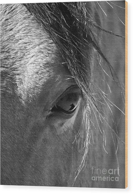 Horse Eye In Black And White Wood Print