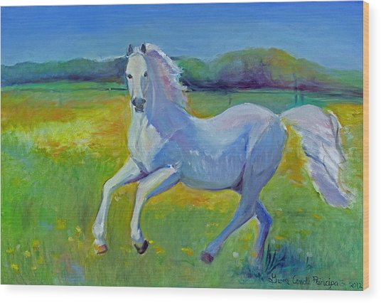Horse Fancy Wood Print by Gwen Carroll