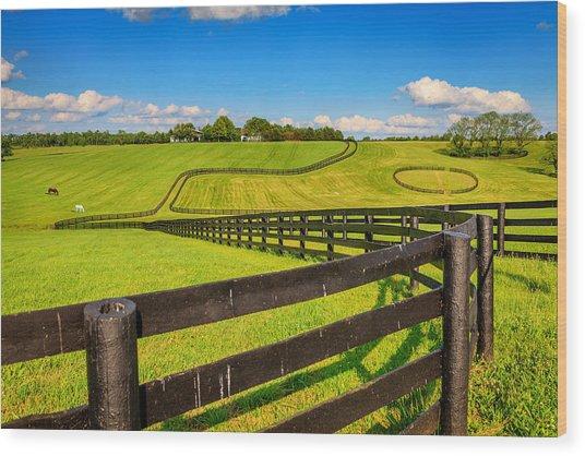 Horse Farm Fences Wood Print