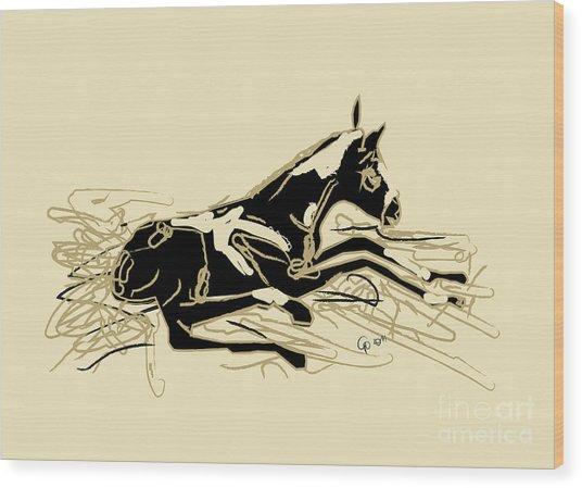 Horse-foal- Just Born Wood Print