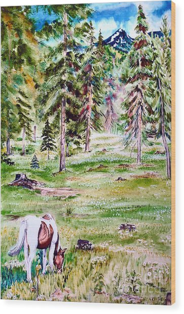 Horse In Daisy Field Wood Print by Tracy Rose Moyers