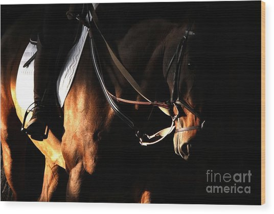 Horse In The Shade Wood Print