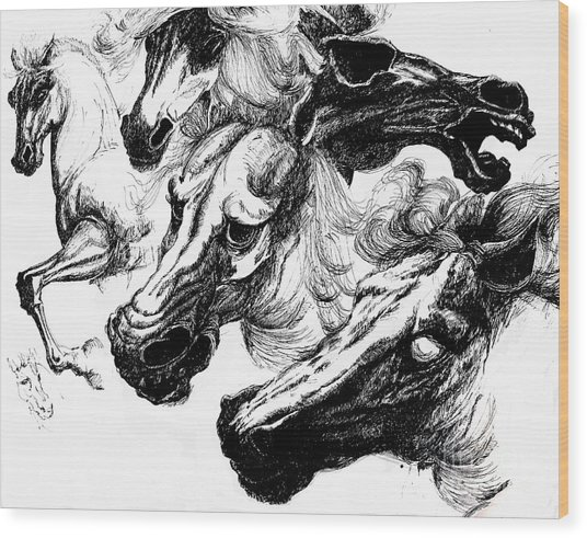 Horse Ink Drawing  Wood Print