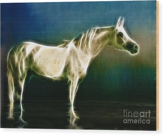 Horse Of Light Wood Print by Jo Collins