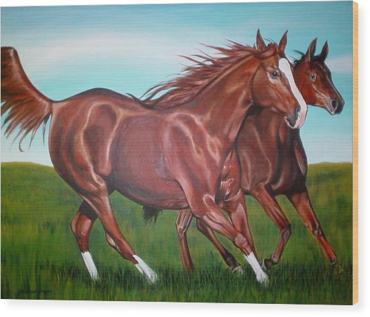 Horse Play Wood Print by Michael Snyder