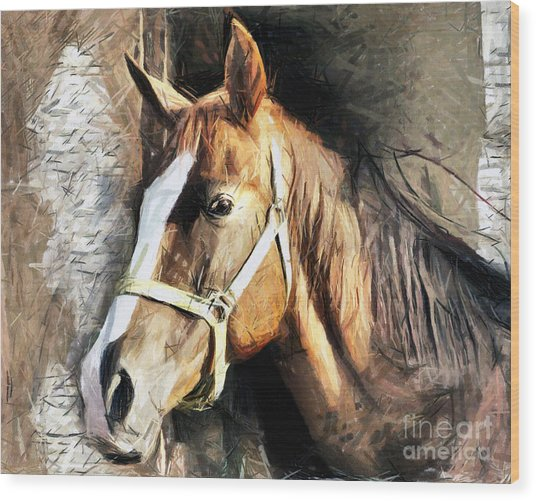 Horse Portrait - Drawing Wood Print