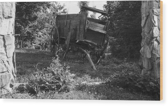 Horseless Blk And Wht  Wood Print by Robert J Andler