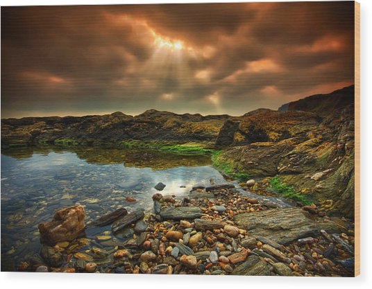 Horseley Cove Rockpool Wood Print by Mark Leader