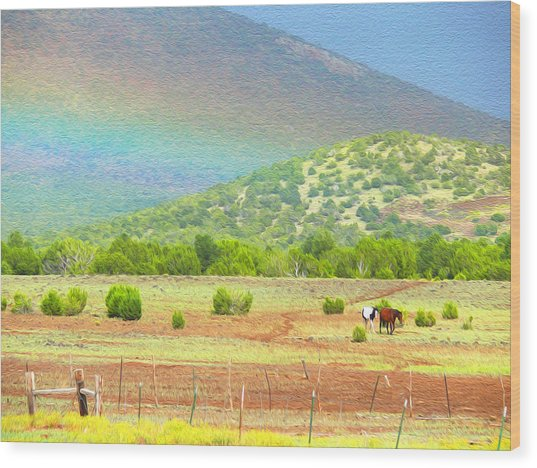 Horses At The End Of The Rainbow Wood Print