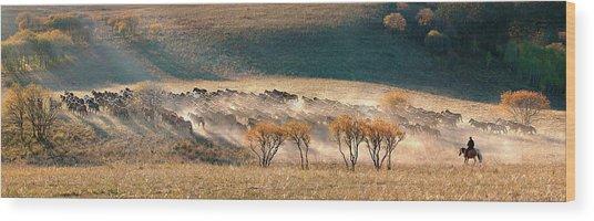 Horses Wood Print by Hua Zhu