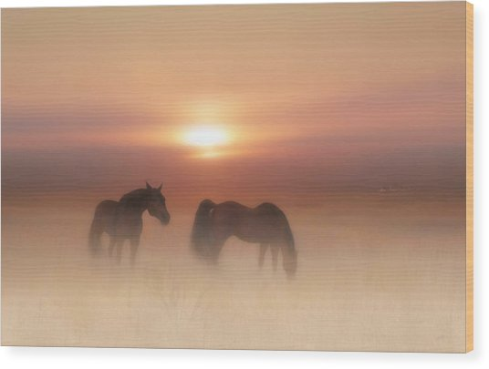 Horses In A Misty Dawn Wood Print