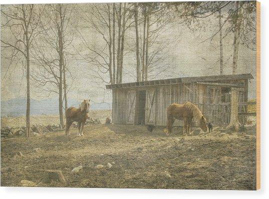 Horses On The Farm Wood Print