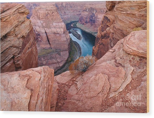 Wood Print featuring the photograph Horseshoe Bend At Dawn by Mae Wertz