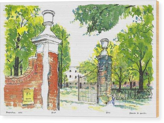 Horseshoe University Of S.c. Wood Print