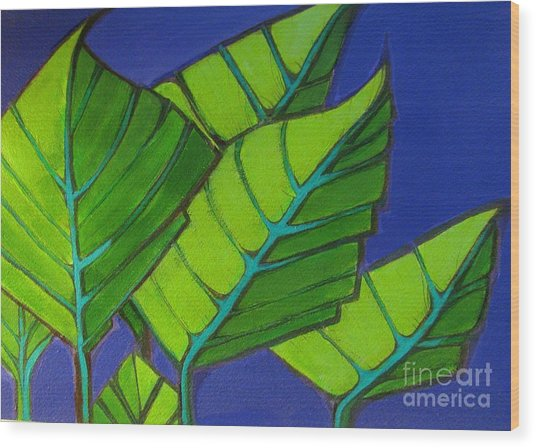 Hosta Blue Tip One Wood Print