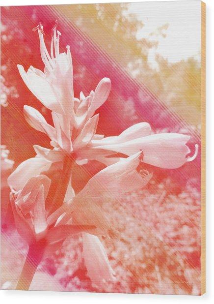 Hosta Flower Wood Print
