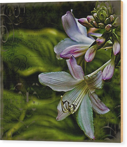 Hosta Lilies With Texture Wood Print