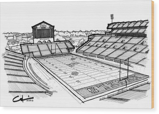 Hotty Toddy Wood Print