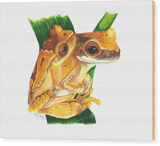 Hourglass Treefrog Wood Print