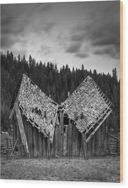 House Broken Wood Print by Ren Alber
