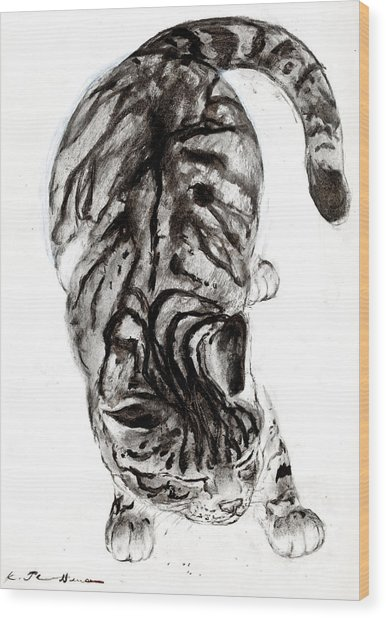 House Cat Wood Print by Kurt Tessmann