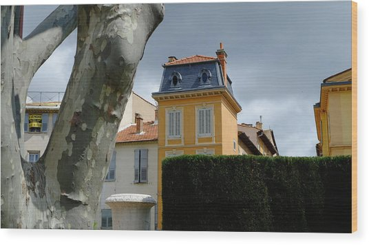 House In Grasse Wood Print