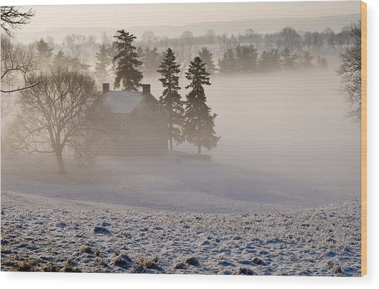 House In The Mist Wood Print