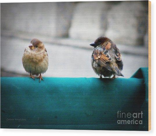 House Sparrows Wood Print