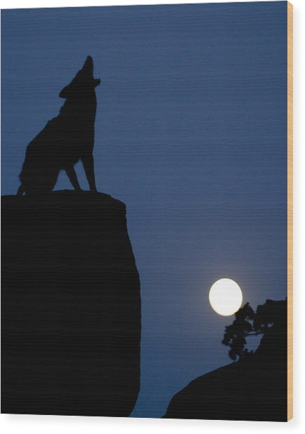 Howl Wood Print