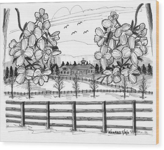 Hudson Valley Apple Blossoms Wood Print
