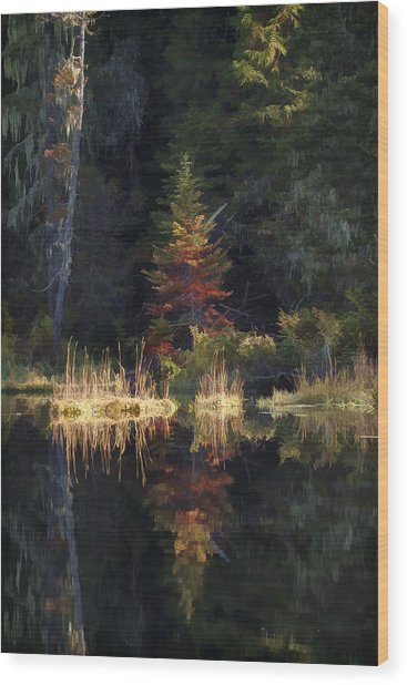 Huff Lake Reflection Wood Print