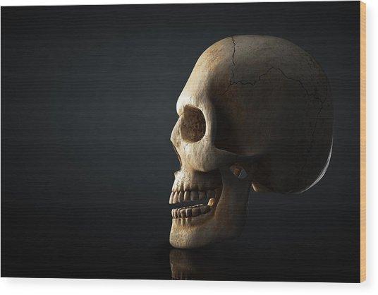 Human Skull Profile On Dark Background Wood Print