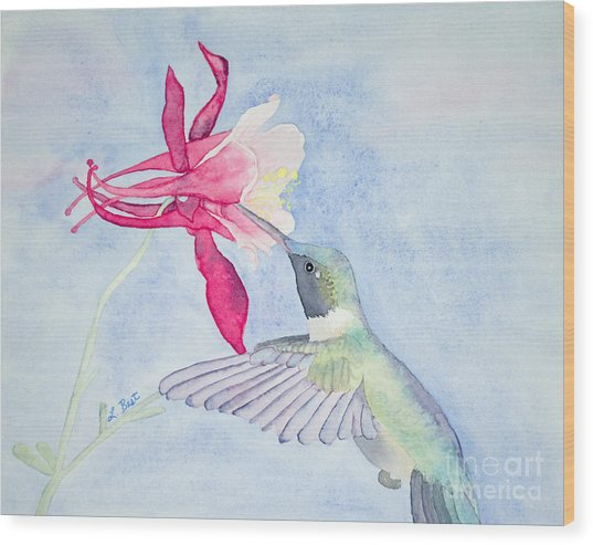 Hummingbird And Columbine Wood Print