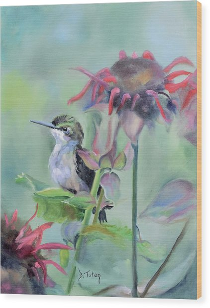 Hummingbird And Coneflowers Wood Print